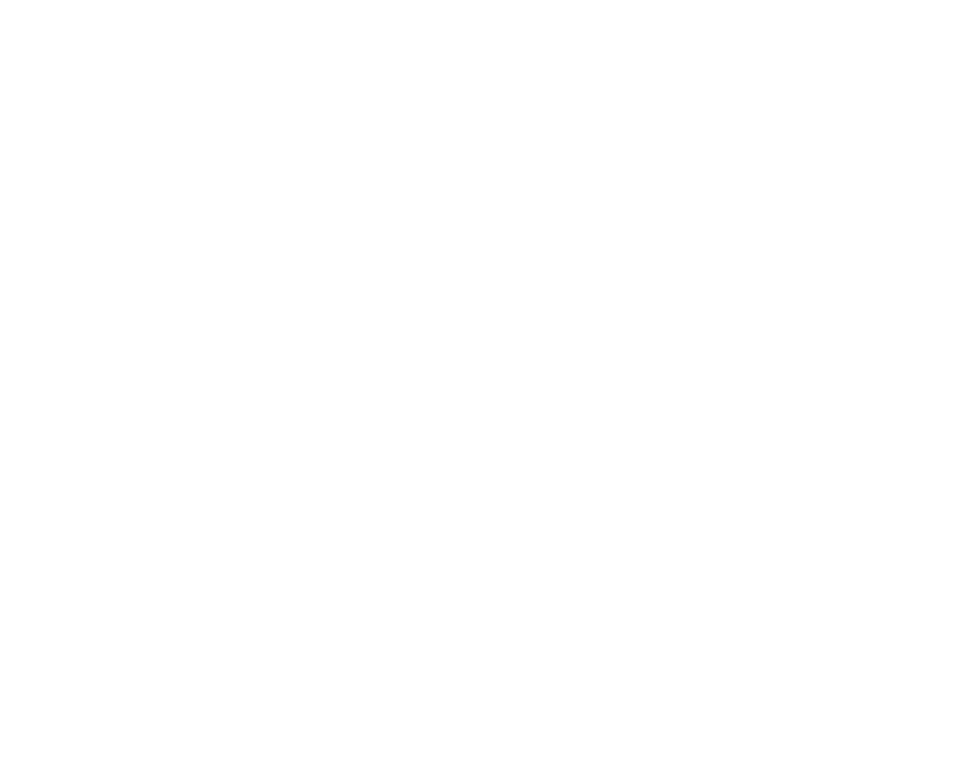 Tourists Paradise